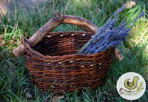 Fafüles tojás- fűszernövény gyűjtő kosárka